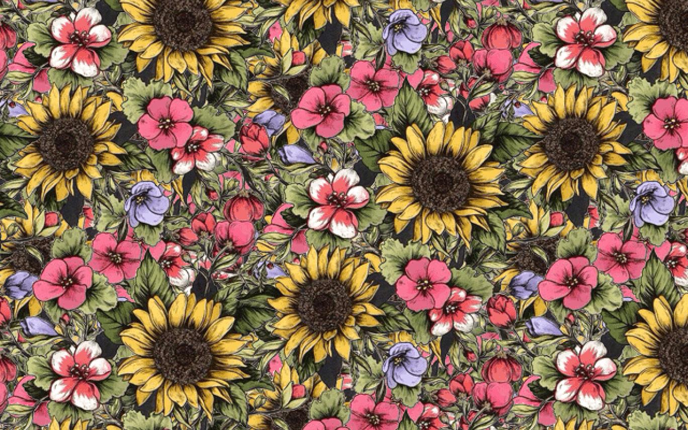 Sunflower - Fondos Tiernos Girasoles Para Iphone , HD Wallpaper & Backgrounds