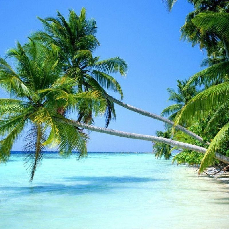 188 1889120 10 latest tropical beach wallpaper desktop full hd