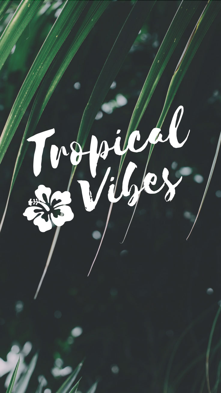 Tropical Vibes Quote Iphone 7 Plus Wallpaper Tap Tropical