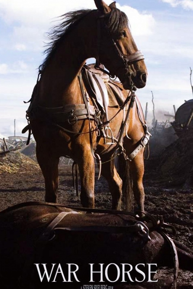 Download Now - Horse In No Man's Land , HD Wallpaper & Backgrounds