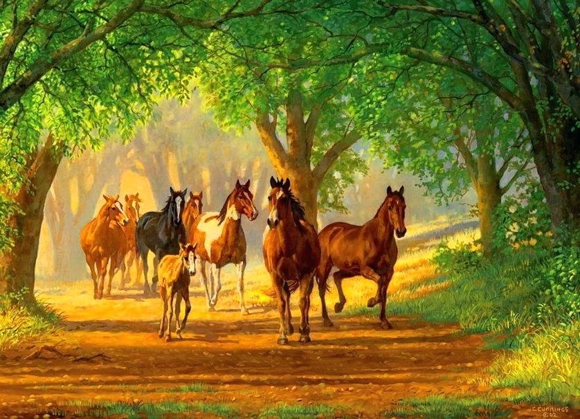 Horse Wallpaper Country Horse Wallpaper Country Lane 1000 Piece