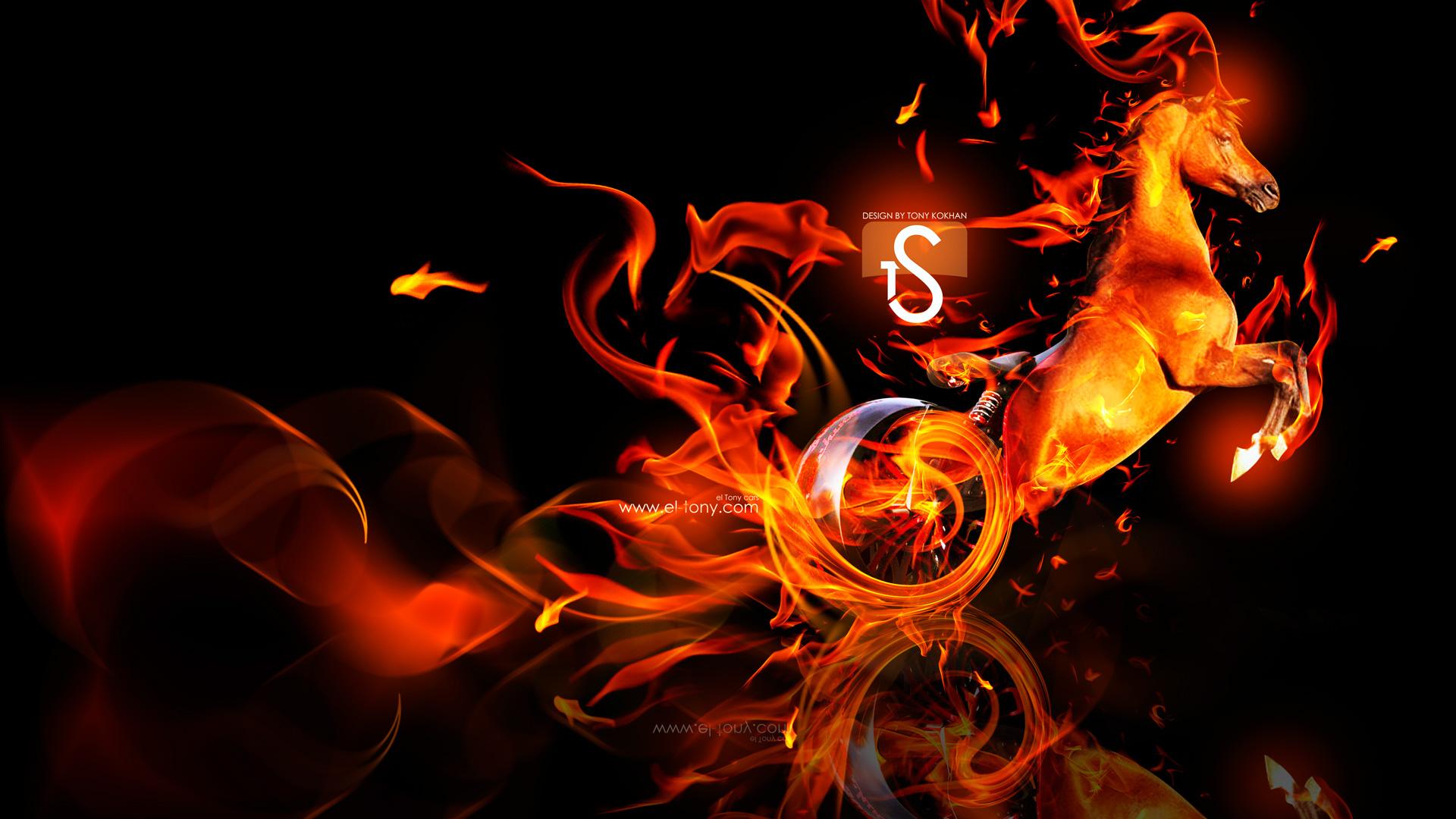 Fantasy Fire Moto Horse 2014 Fire Horses 1893366 Hd Wallpaper Backgrounds Download
