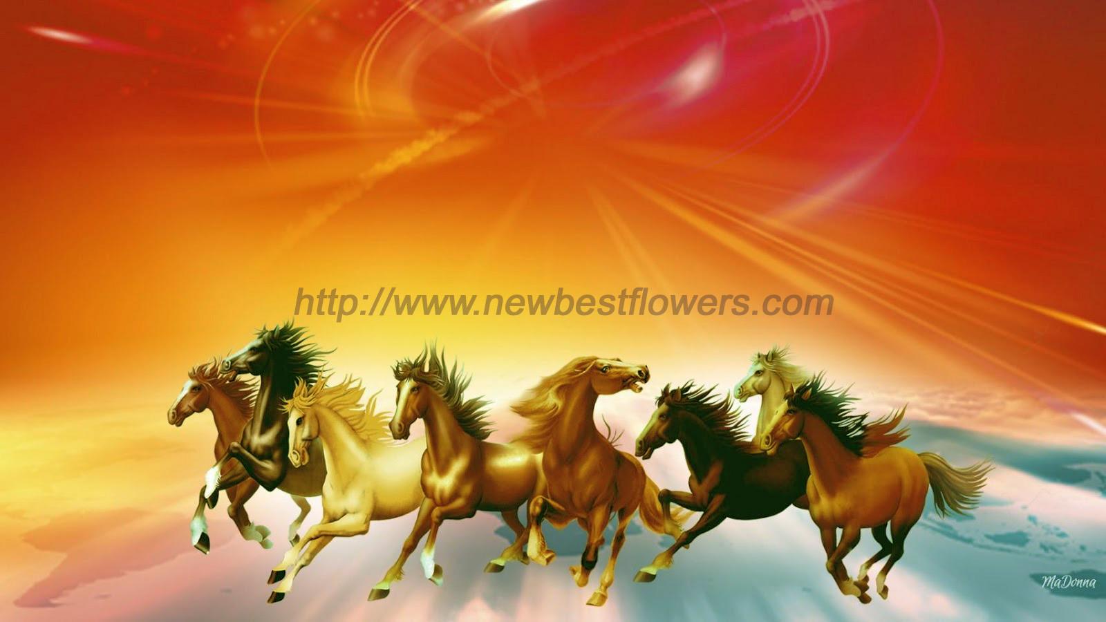 Horse Full Hd Wallpaper Seven Horse 1893746 Hd Wallpaper