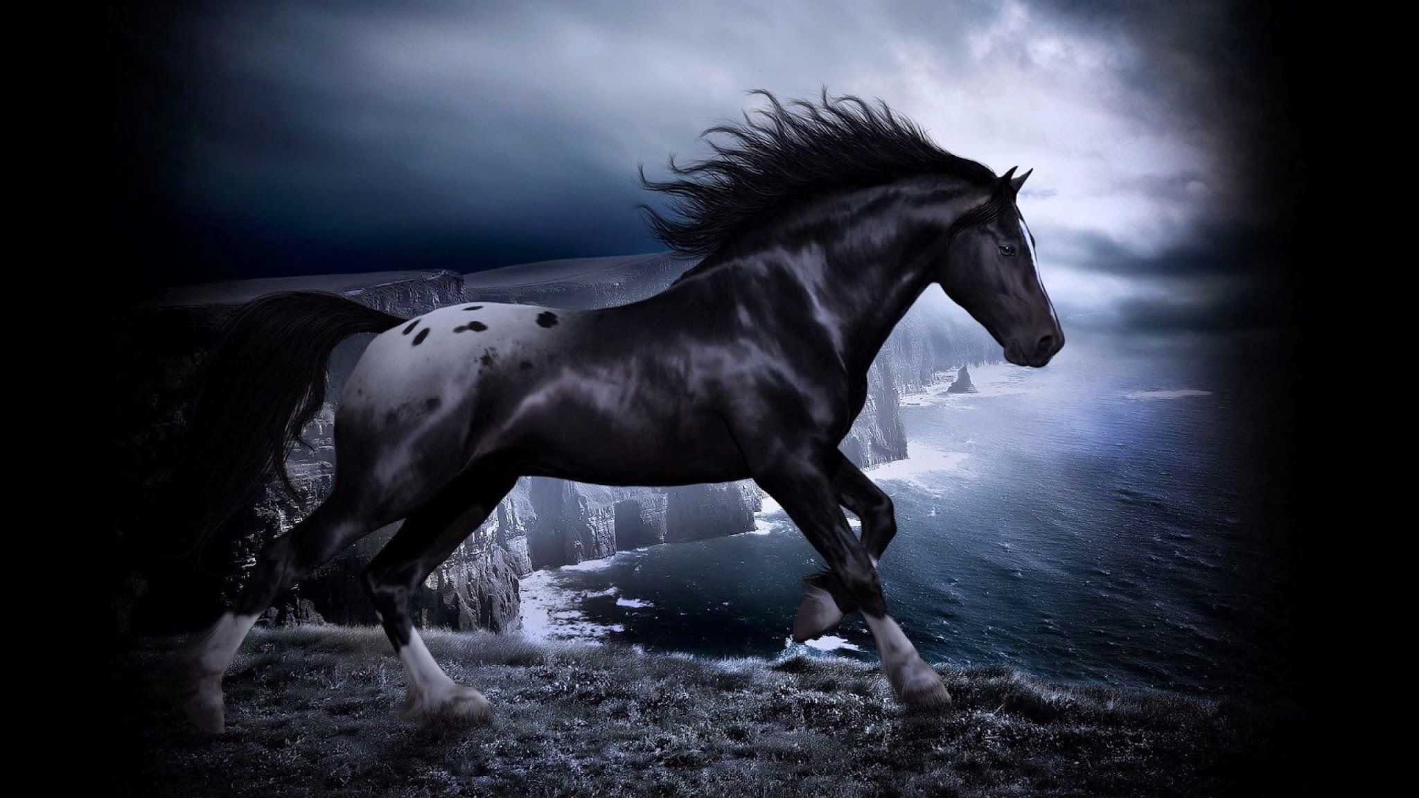 Black Horse 3d Desktop Wallpaper Black Horses Wallpaper Hd