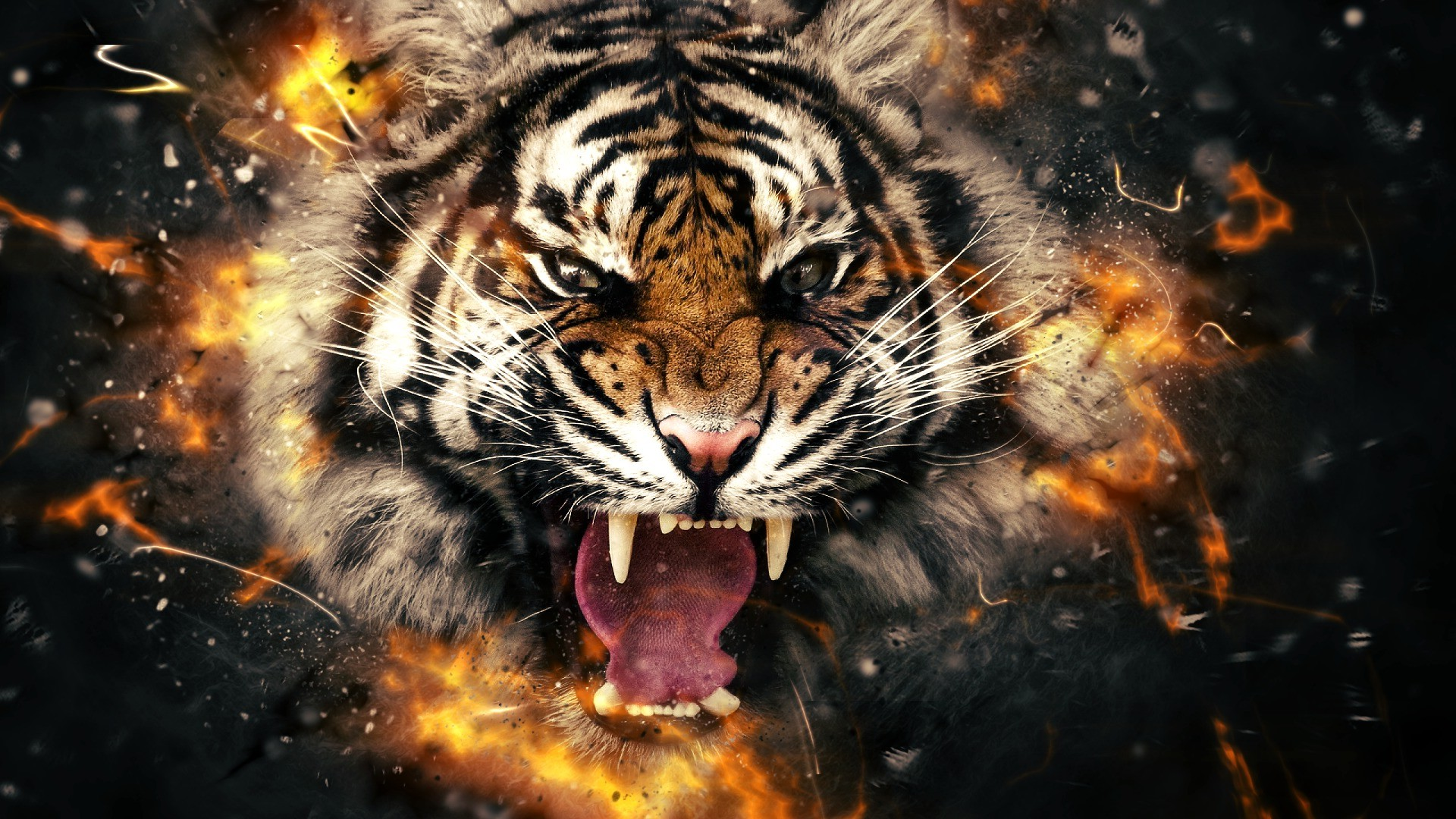 Back To 86 3d Digital Face Wallpapers Angry Tiger
