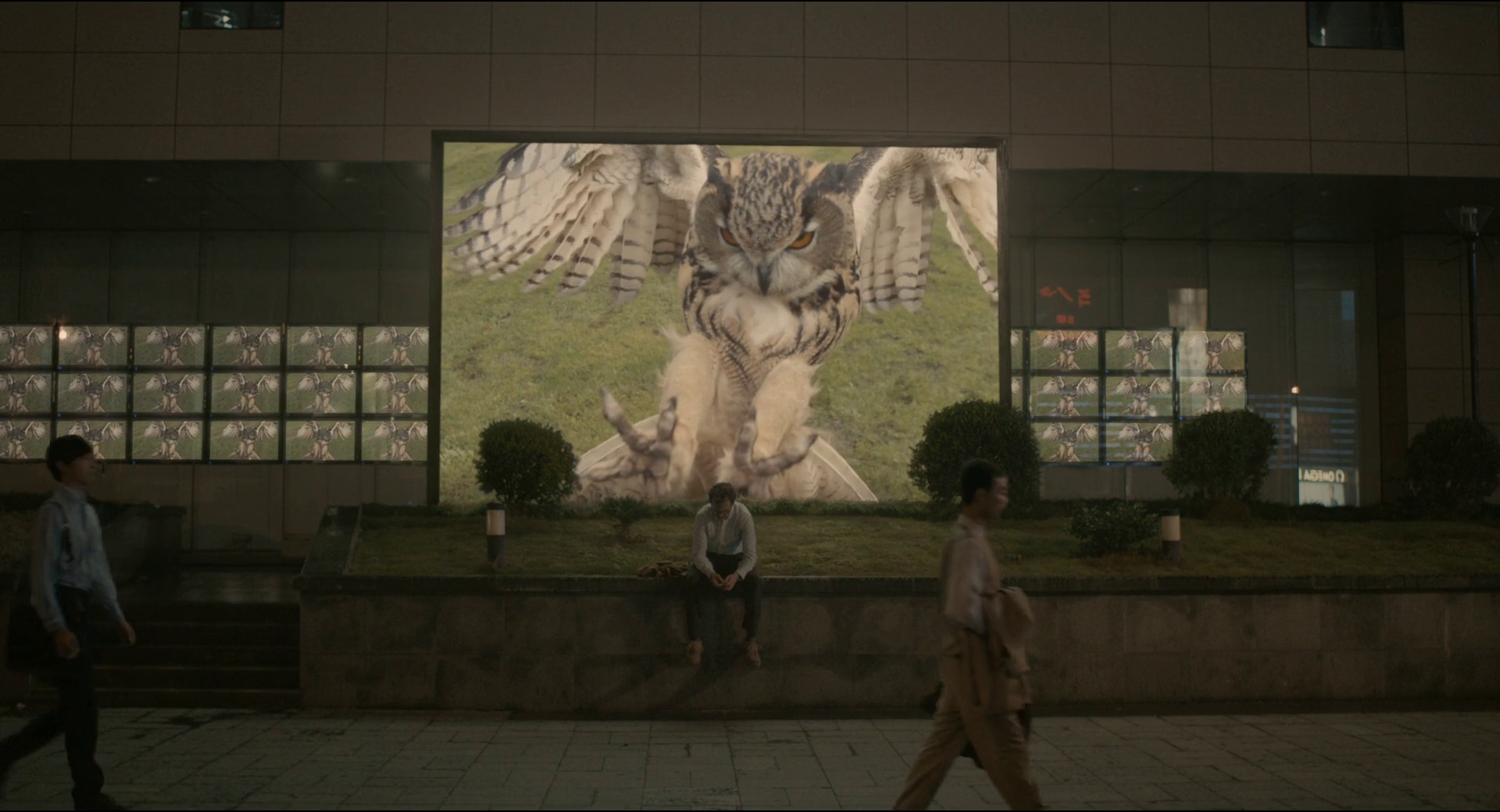 Spike Jonze Her Cinematography , HD Wallpaper & Backgrounds