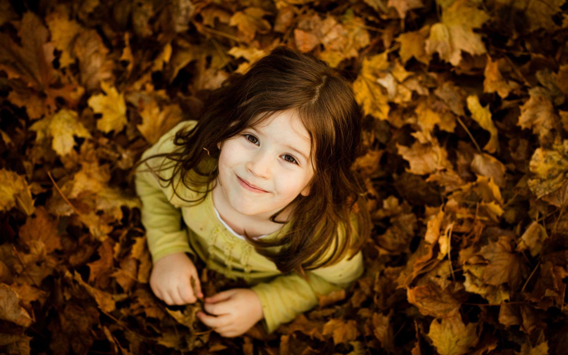 Laughing Children Fall Nature Girl Leaf Wood Maple - Prety Baby Girl , HD Wallpaper & Backgrounds
