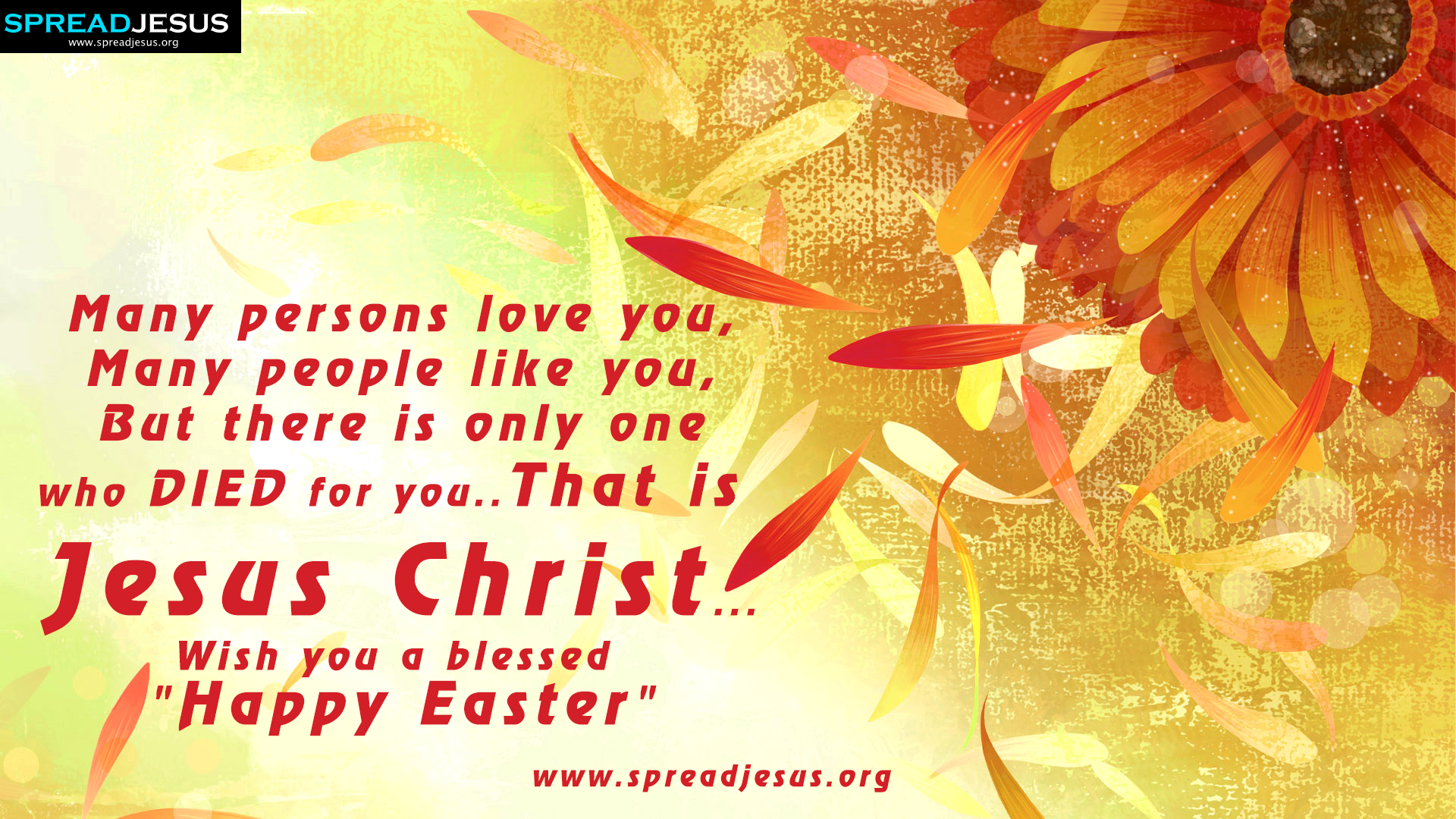 Awesome Easter Wishes Quotes In Malayalam With Wish You A Blessed Happy Funny Birthday Cards Online Alyptdamsfinfo