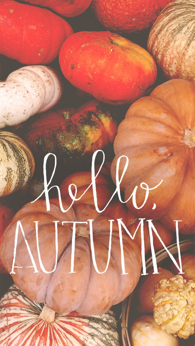 Hello Autumn 640 X 1136 Wallpapers Available For Free