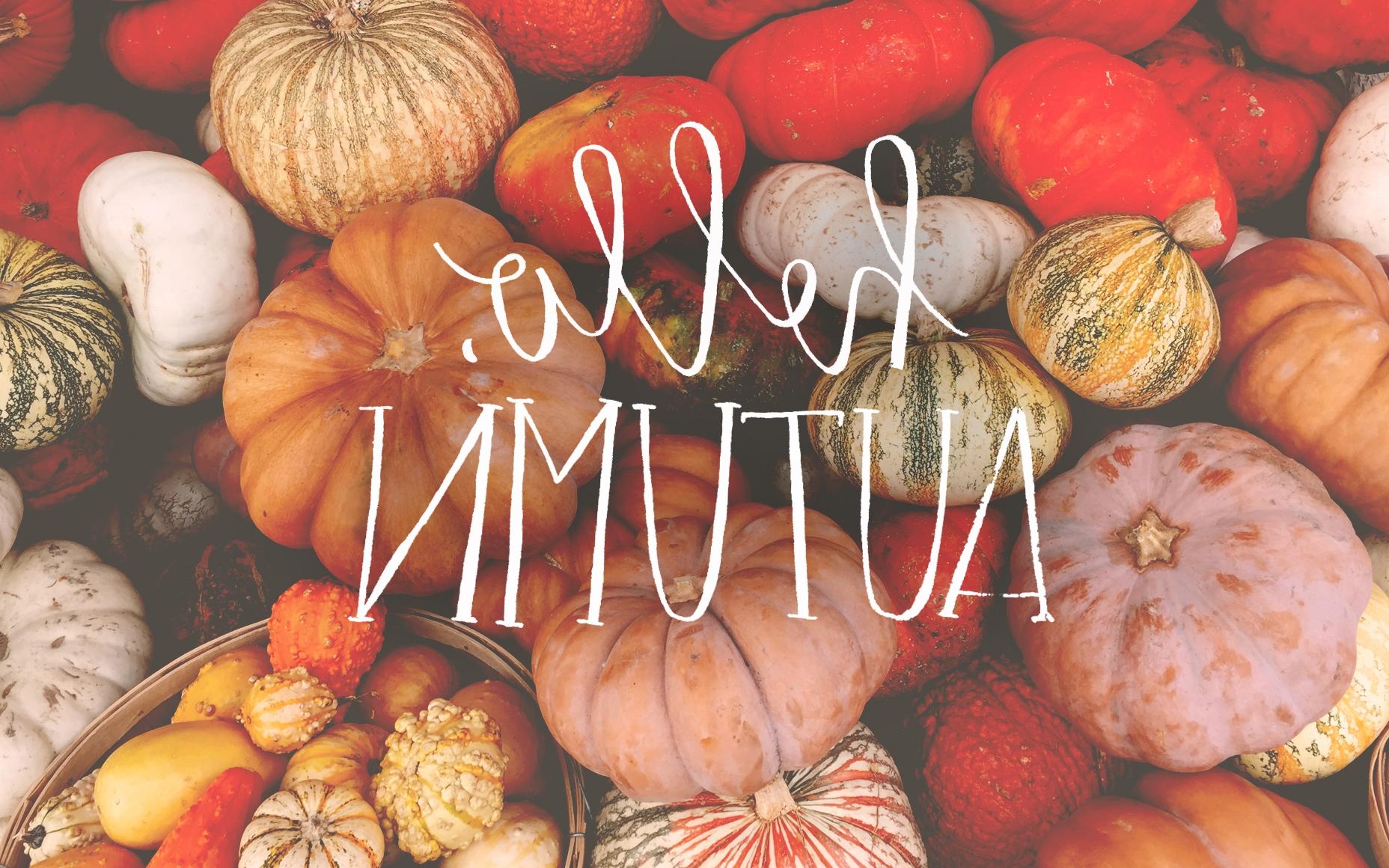 Fall Leaves November Wallpaper Hello Autumn Wallpaper