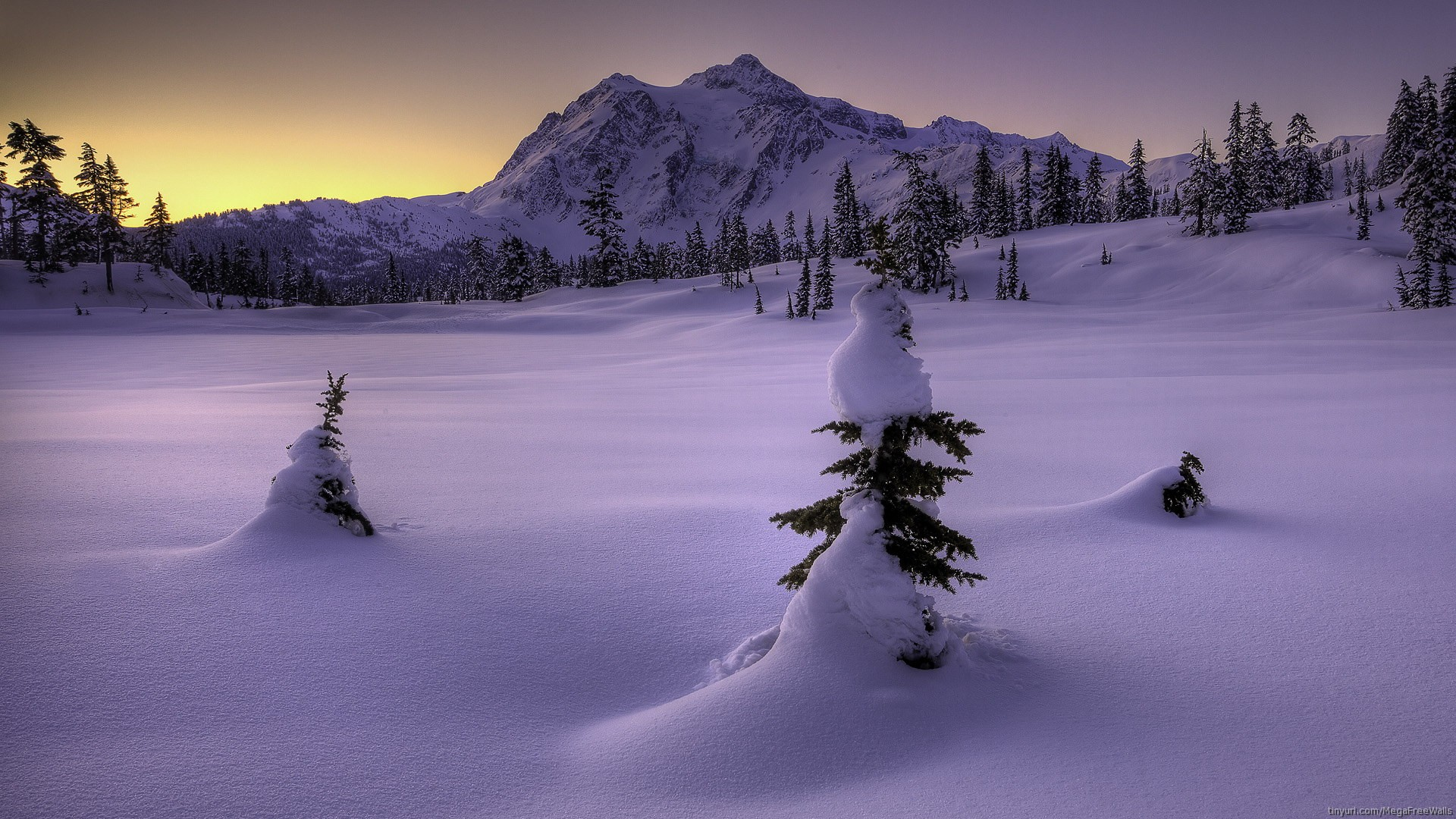 Snow Winter Landscape Mountain Hd Wallpaper North Cascades