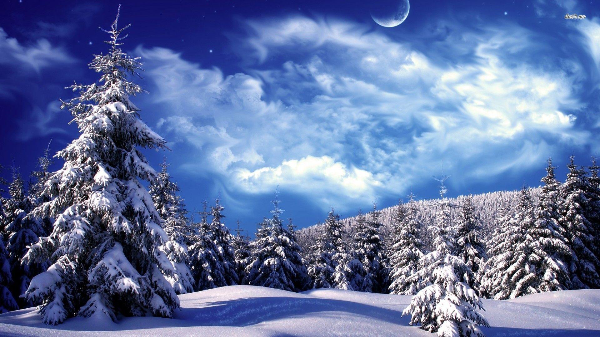 Winter Wonderland Wallpaper, Winter Wonderland Pictures, - Winter Wonderland Background Hd , HD Wallpaper & Backgrounds
