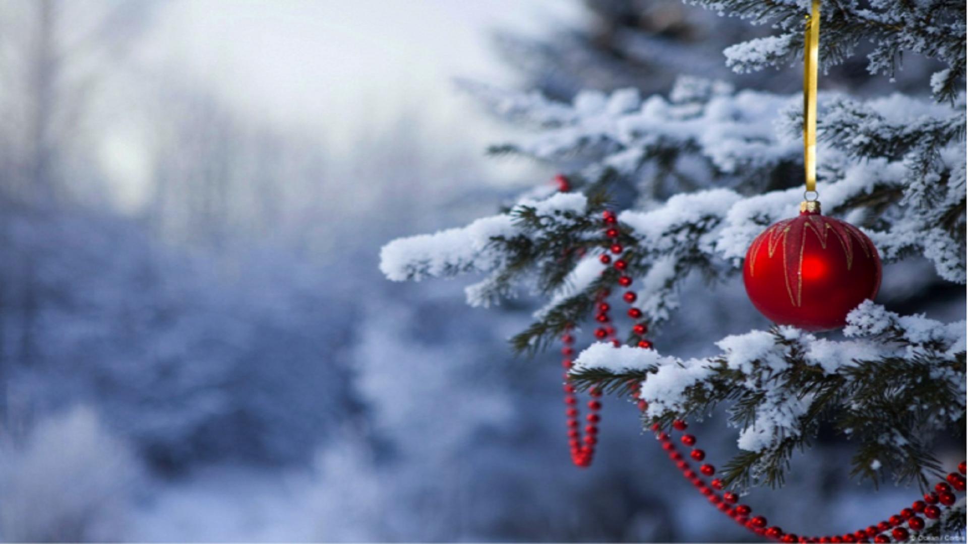 Christmas Wallpapers Hd Free Download , Winter Christmas