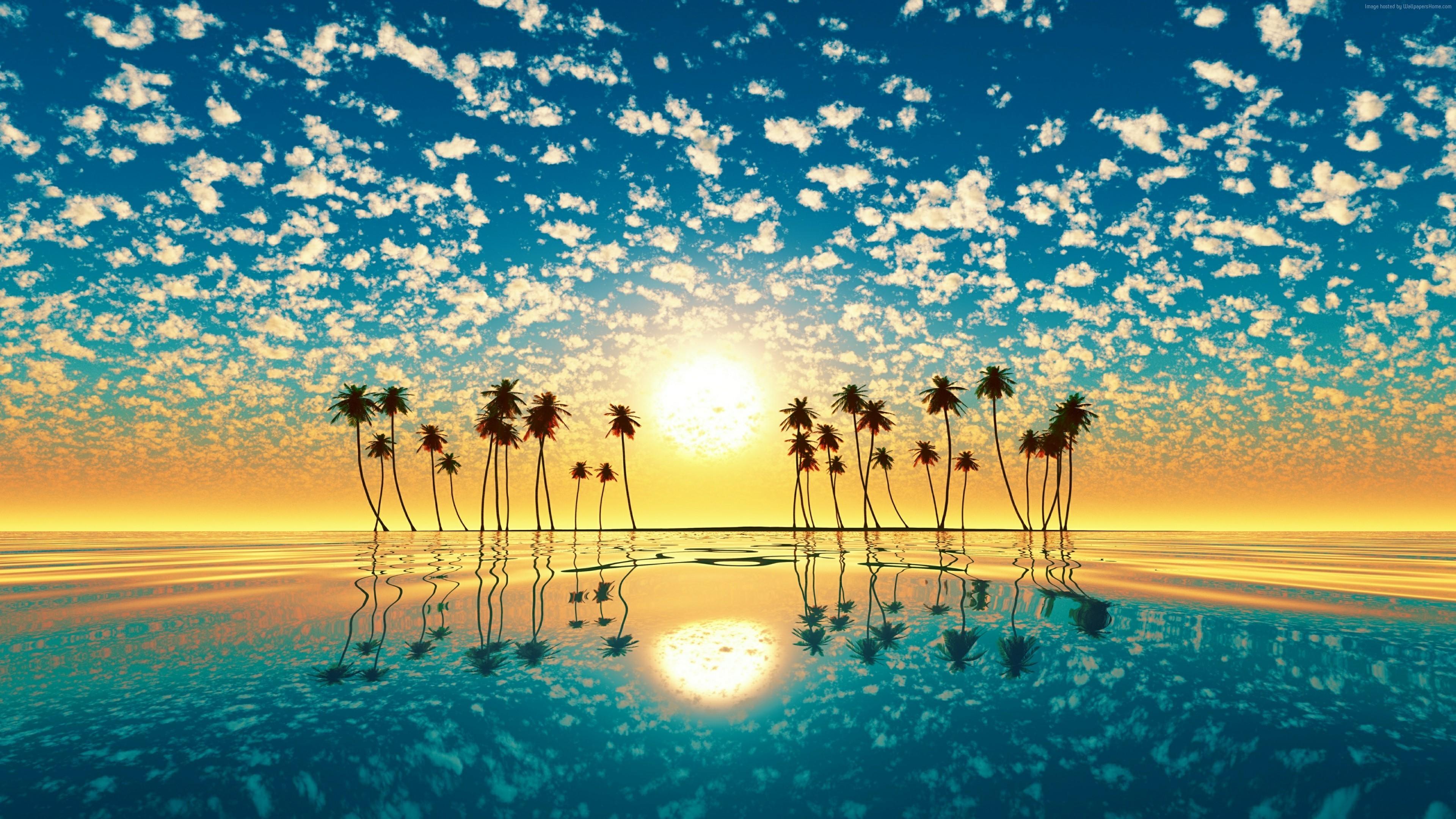 #4k, #horizon, #sea, #sunset - Palm Trees Sunset Wallpaper Hd , HD Wallpaper & Backgrounds