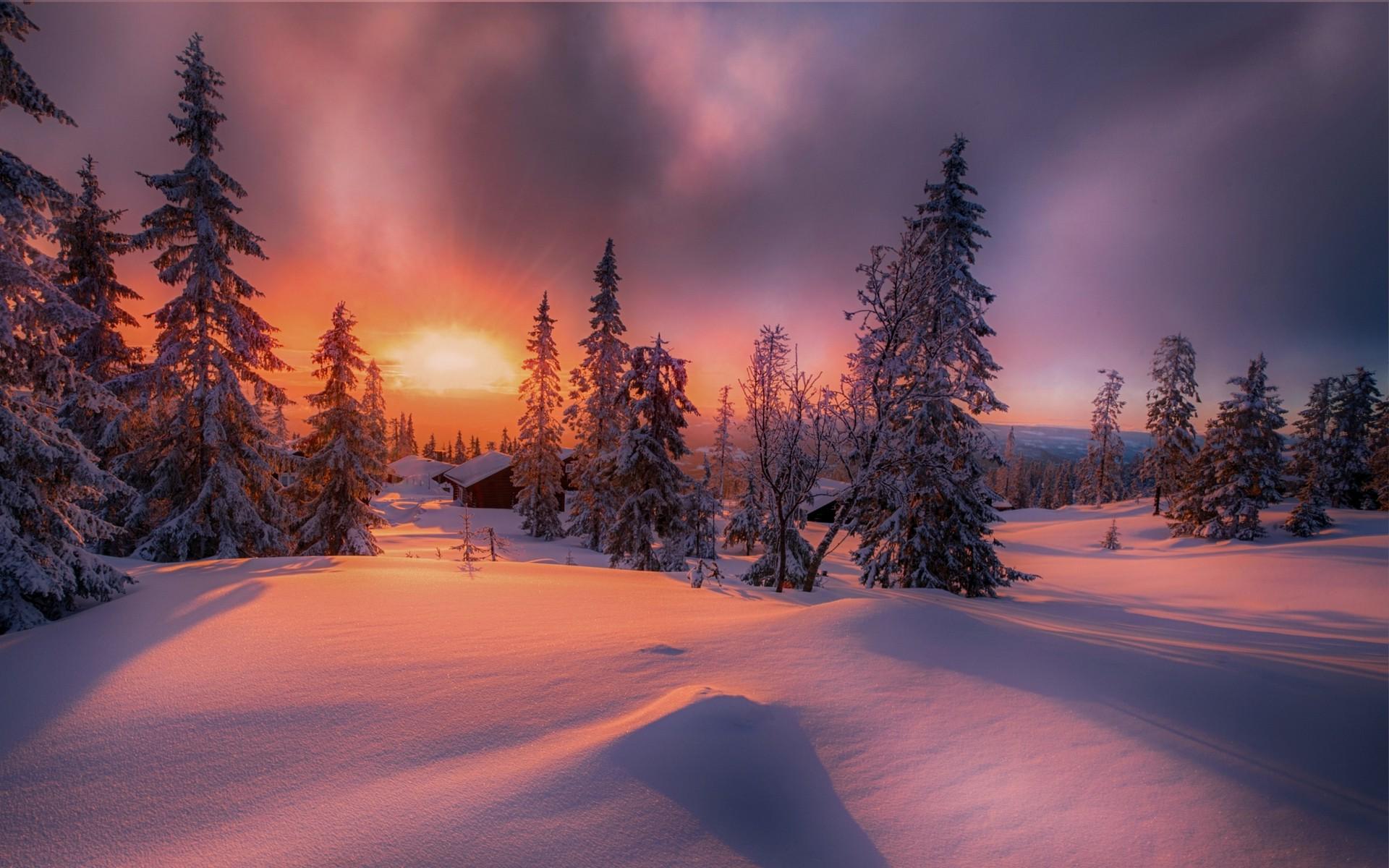 Nature, Landscape, Forest, Sunset, Cottage, Winter, - Winter Forest Sunset Background , HD Wallpaper & Backgrounds