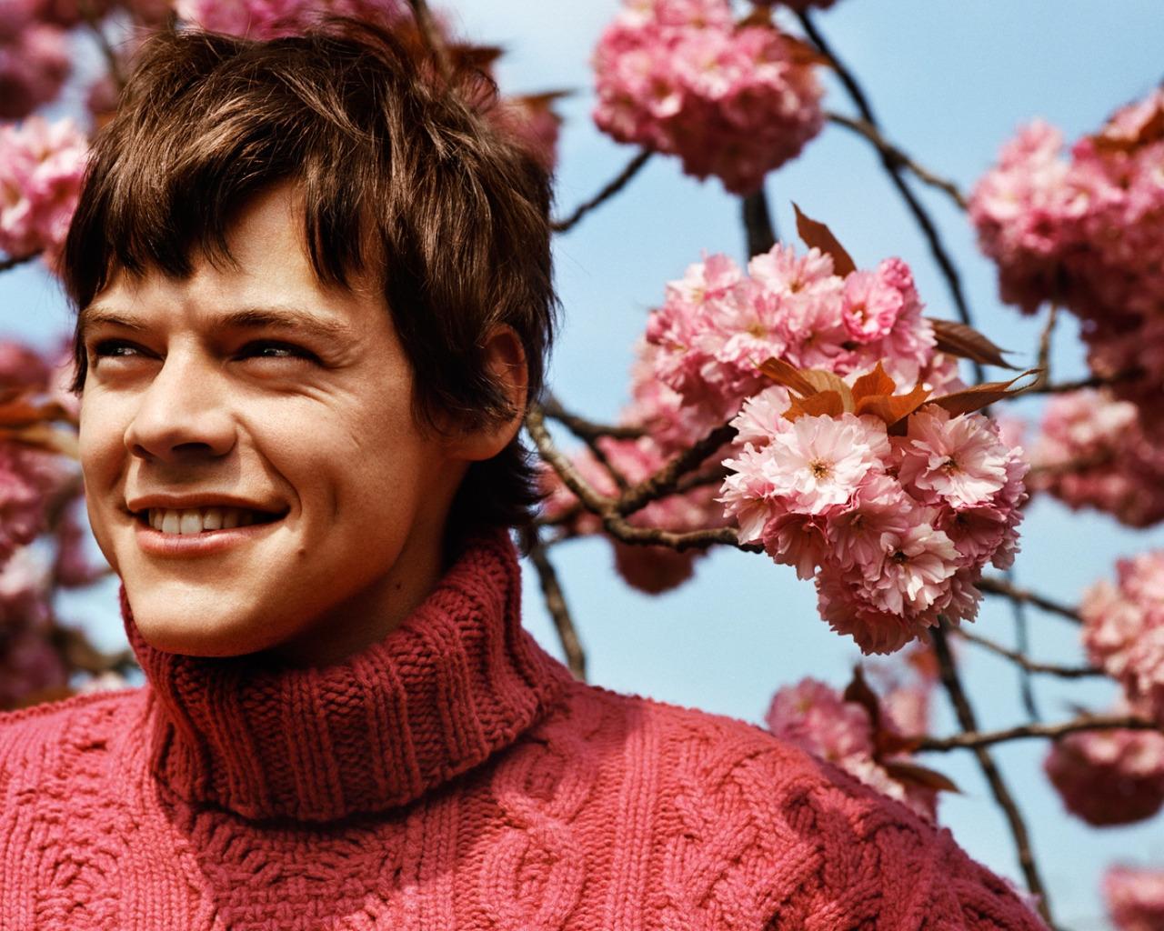 Imagem linda do Harry Styles em fundo de rosas.
