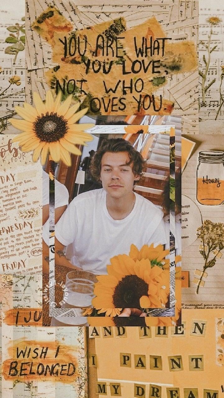 Aesthetic Harry Styles Lockscreen , HD Wallpaper & Backgrounds