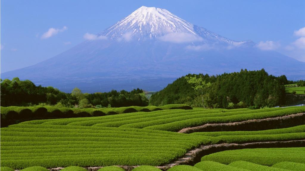 Beautiful Nature Wallpapers For Desktop Free Download - Fuji Mountain , HD Wallpaper & Backgrounds