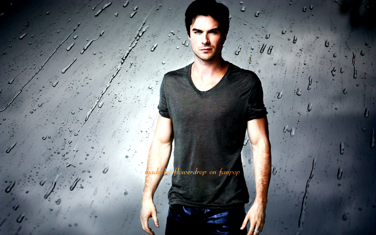 The Vampire Diaries Images Tvd Wallpaper ღ Hd Wallpaper - Damon Salvatore Wallpaper Hd , HD Wallpaper & Backgrounds