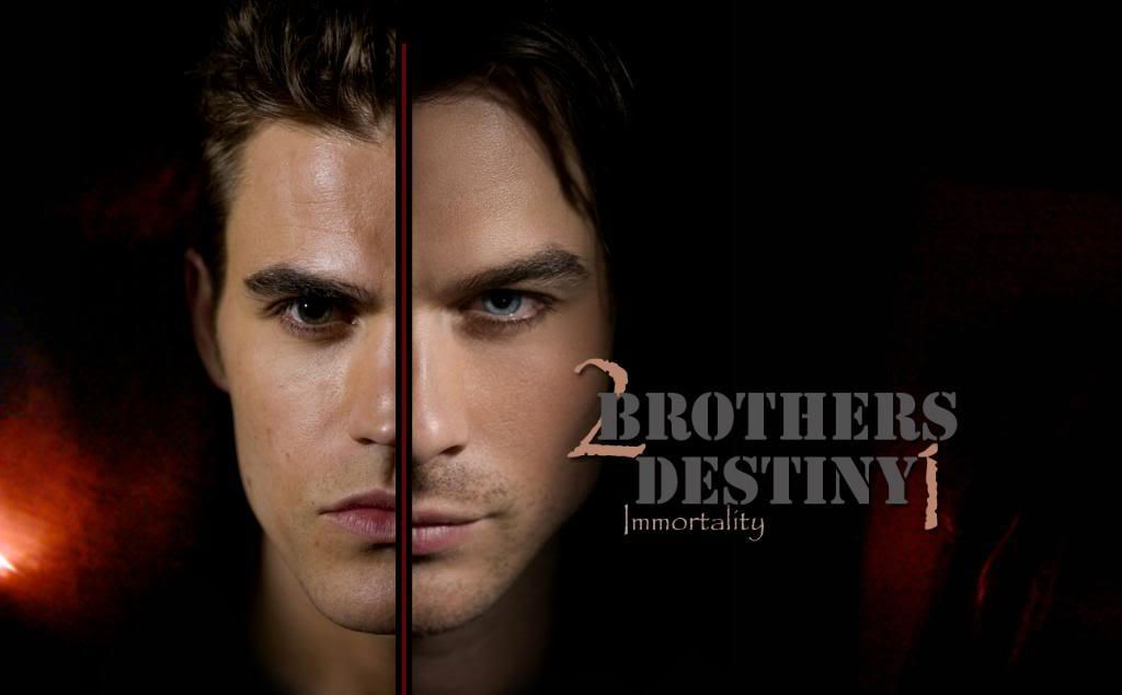Vampire Diaries Damon Wallpaper - Vampire Diaries , HD Wallpaper & Backgrounds
