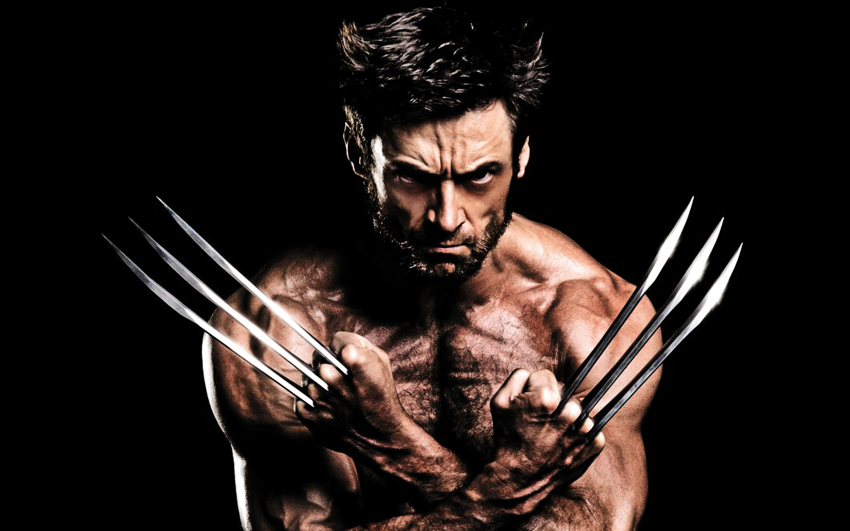 Wolverine Wallpaper X Man Wallpaper 4k 21438 Hd Wallpaper Backgrounds Download