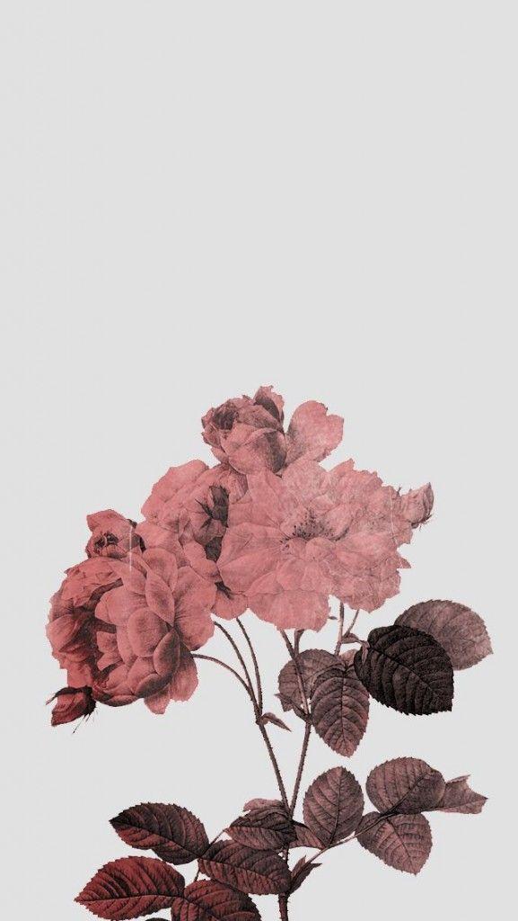 Rose - Aesthetic Blue Lockscreen , HD Wallpaper & Backgrounds