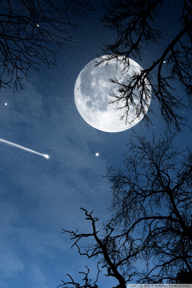 Mobile Hvga - Moon And Shooting Star , HD Wallpaper & Backgrounds