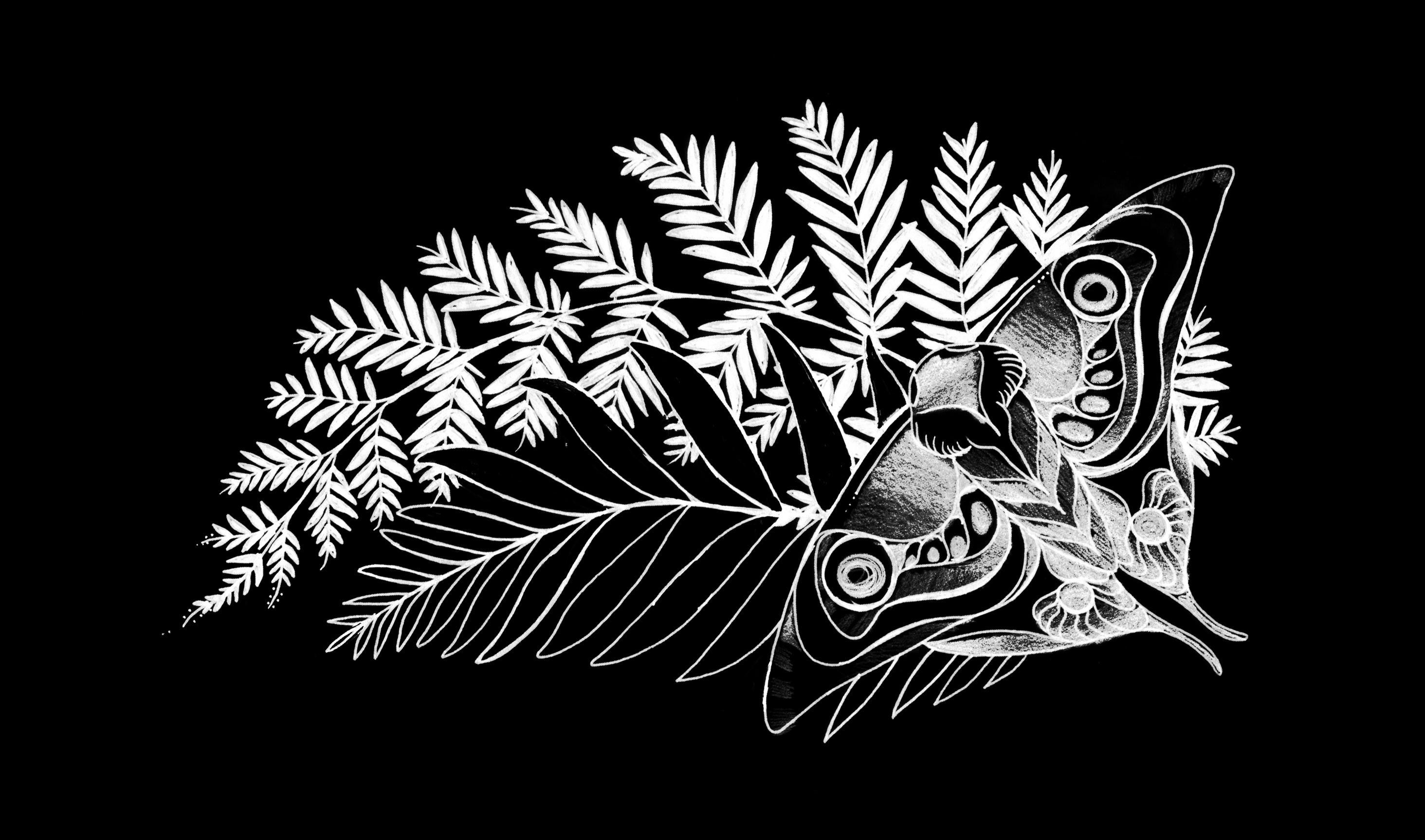 Imageellie Tattoo Wallpaper In Black - Last Of Us Ellie Tattoo , HD Wallpaper & Backgrounds