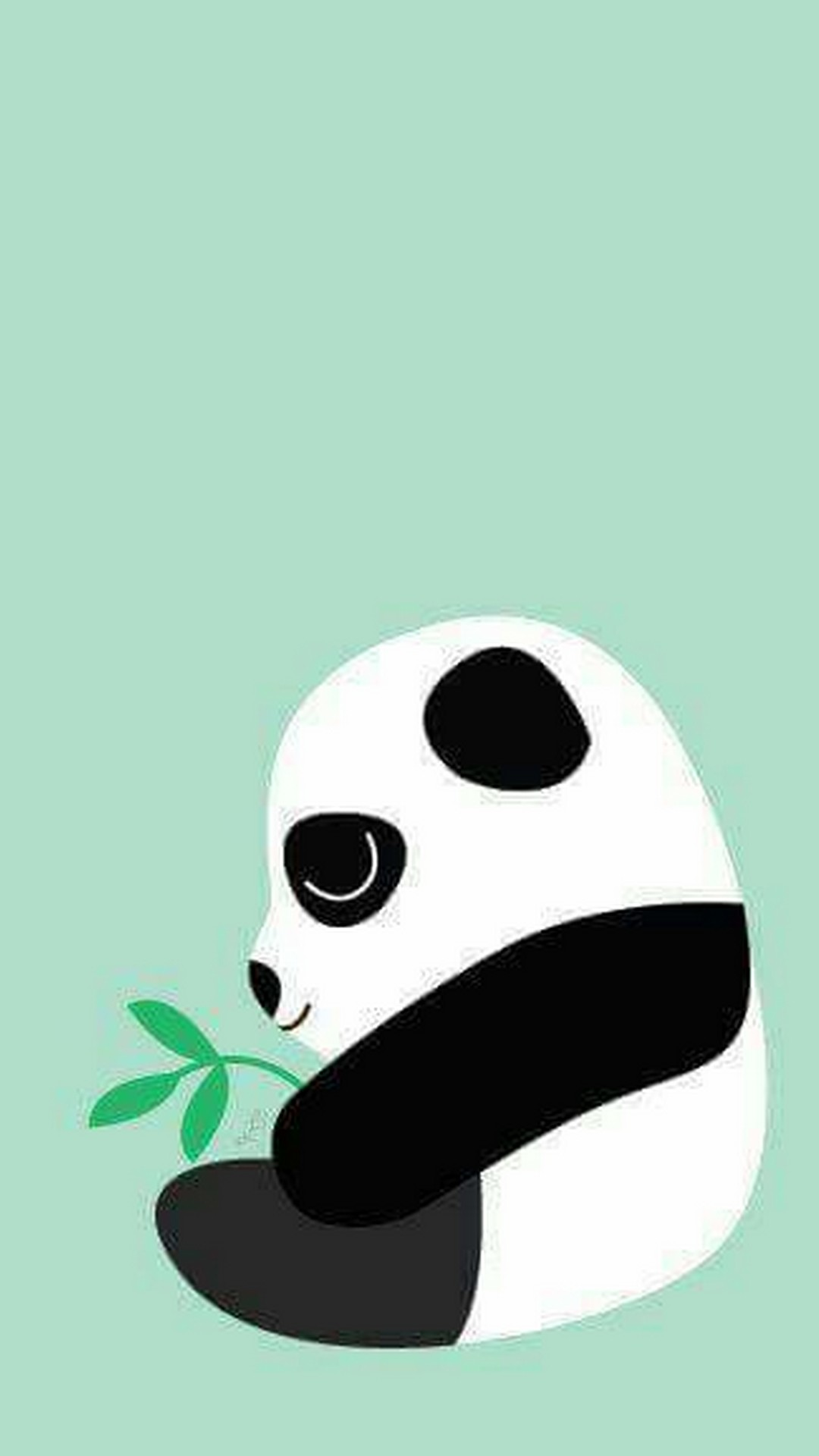Baby Panda Screensavers Vivo HD Wallpaper