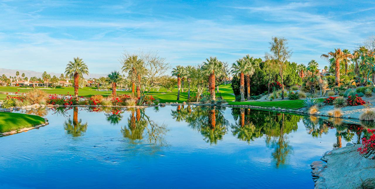 Wallpapers California Usa Palm Desert Nature Lake Palms