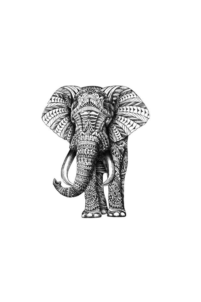 1000 Images About Iphone Wallpaper On Pinterest Elephant
