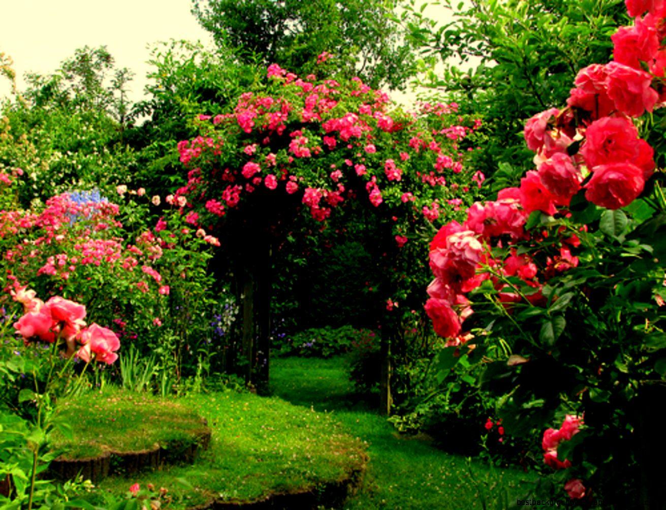 View Original Size - Beautiful Flowers Roses Garden , HD Wallpaper & Backgrounds