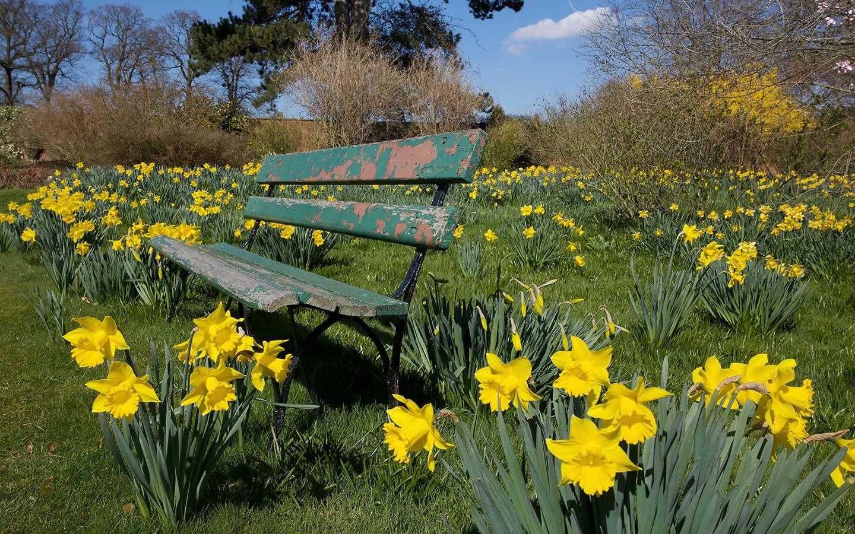 Flower Garden Wallpaperfree Downloads Wallpaperfree - Garden Seat Background Hd , HD Wallpaper & Backgrounds