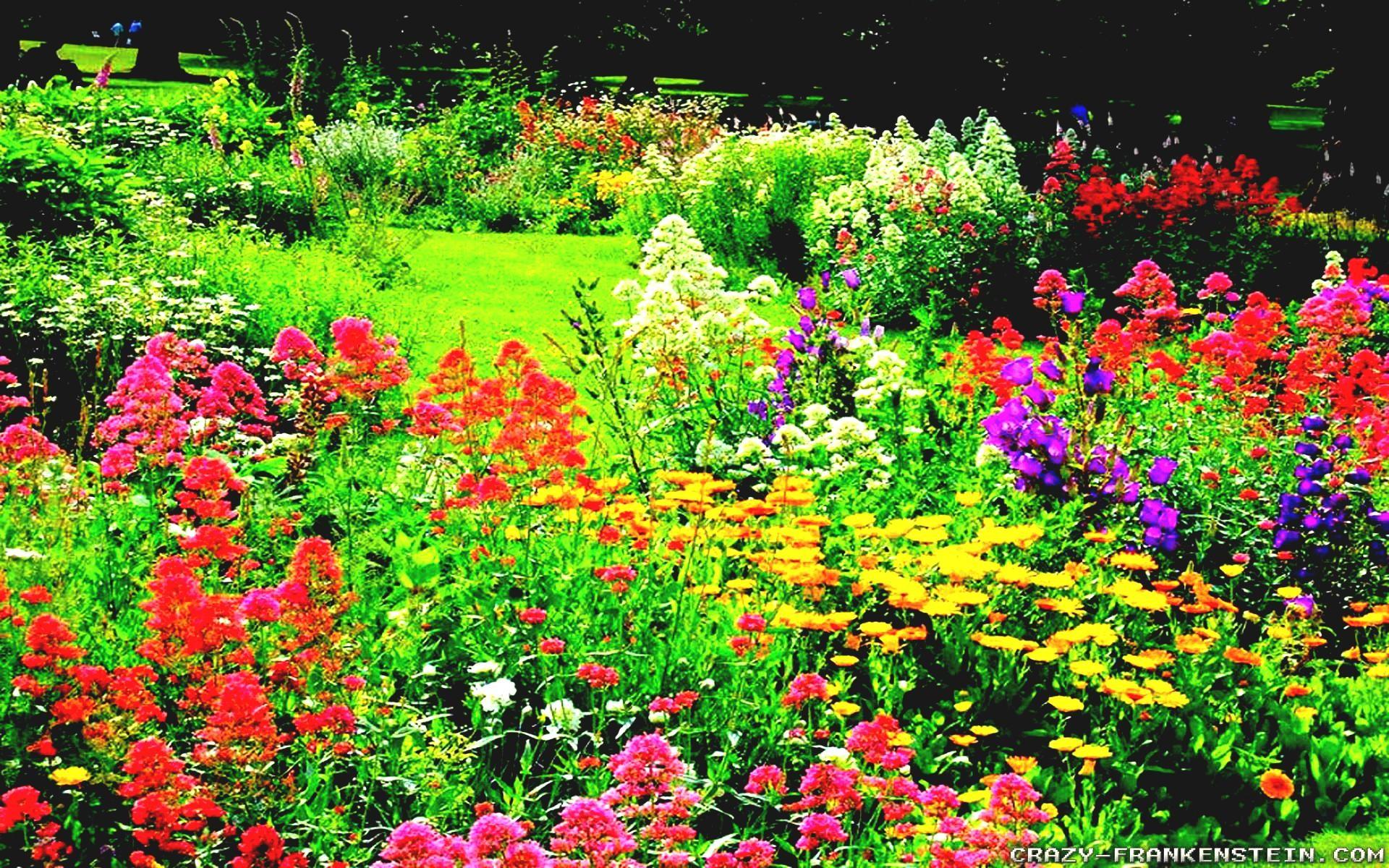 Download Original Wallpaper Category - Open Flower Garden , HD Wallpaper & Backgrounds