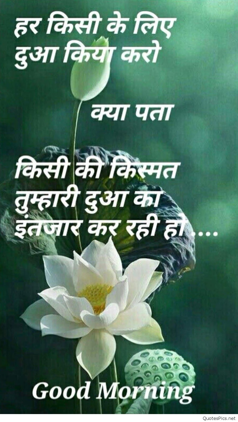 Good Evening Motivational Quotes In Hindi With 30 Morning Dil Se