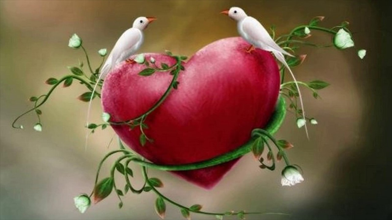 Love Birds Wallpaper For Mobile Love Birds 2038227 Hd