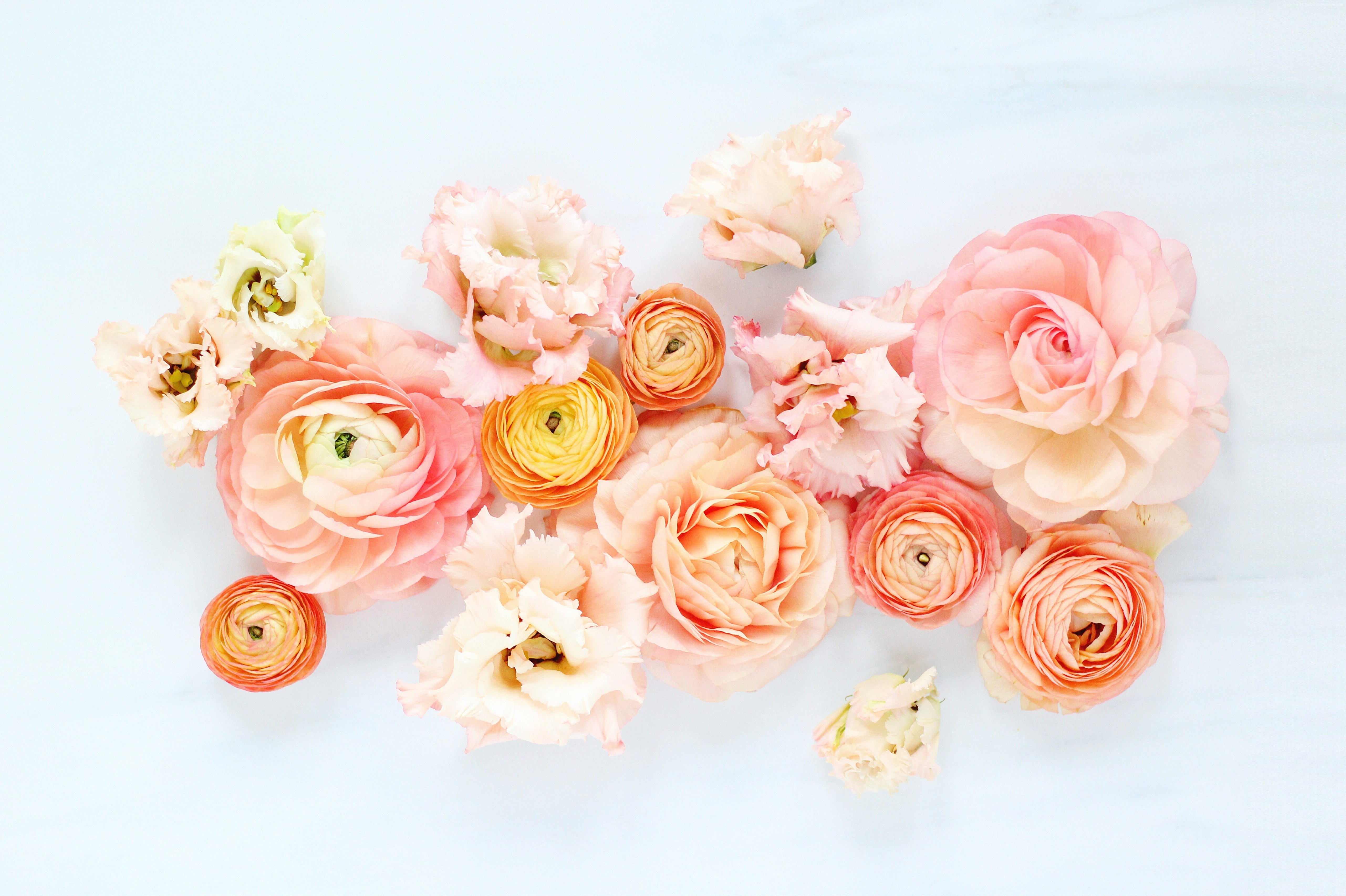 Click The Wallpaper To View Full Size - Justine Celina Digital Blooms , HD Wallpaper & Backgrounds