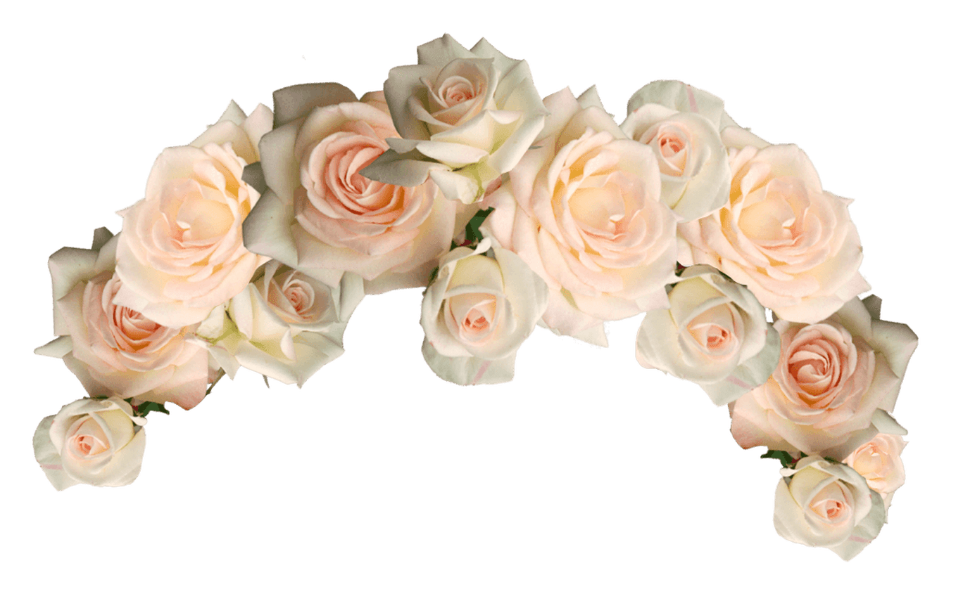 Flower Crown Png Transparent - Png Flower Crown White , HD Wallpaper & Backgrounds