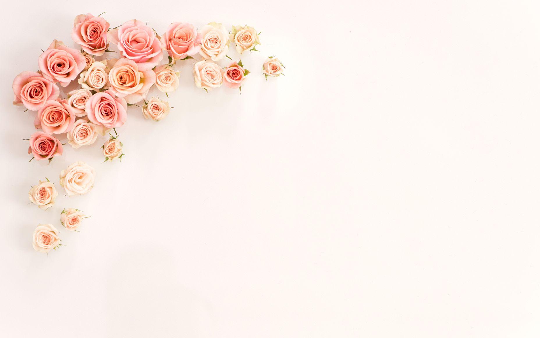 204 2048267 pink and gold desktop wallpaper rose gold aesthetic