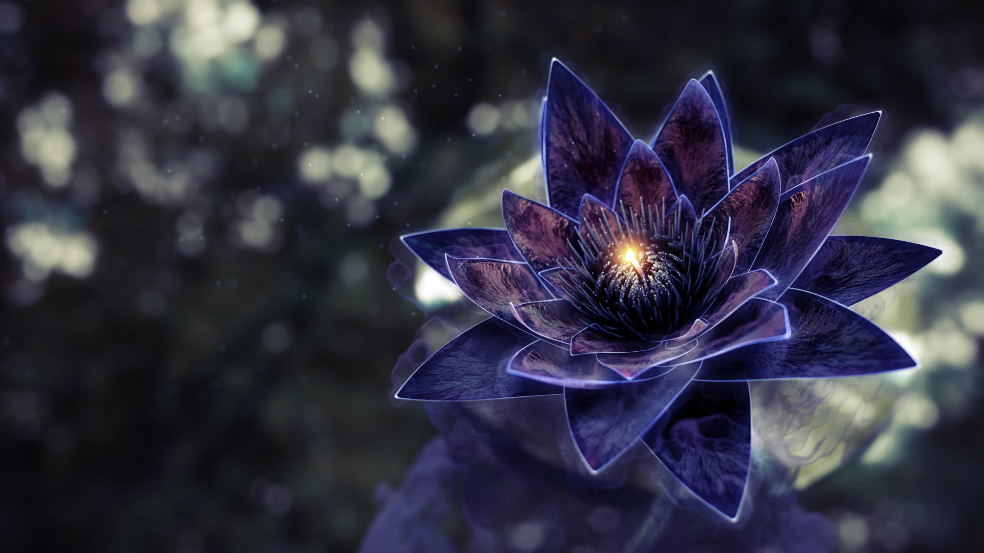 Black Lotus - Black Lotus Flower , HD Wallpaper & Backgrounds