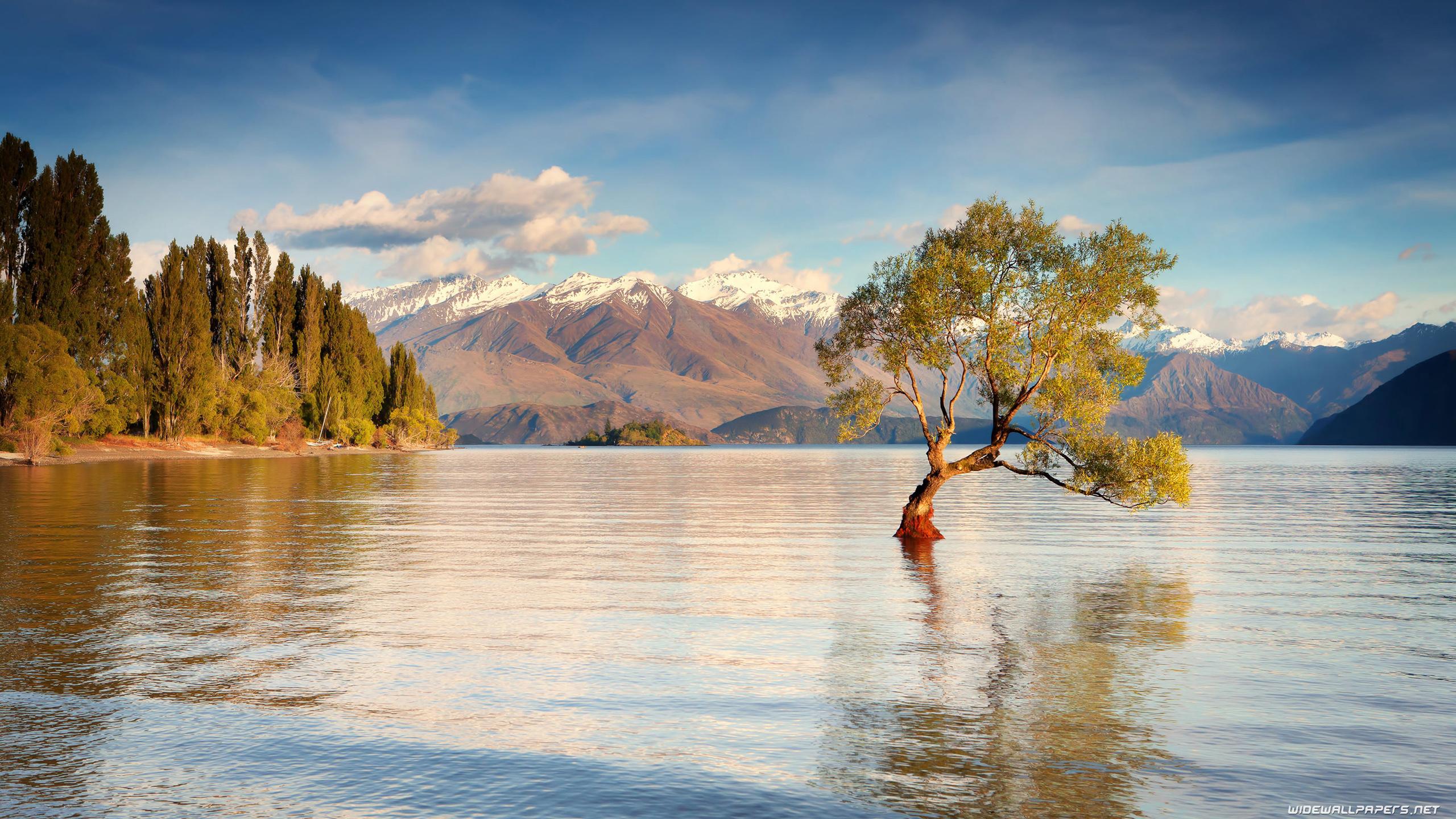 New Zealand Wallpapers 4k Ultra Hd New Zealand - New Zealand Wanaka Background , HD Wallpaper & Backgrounds