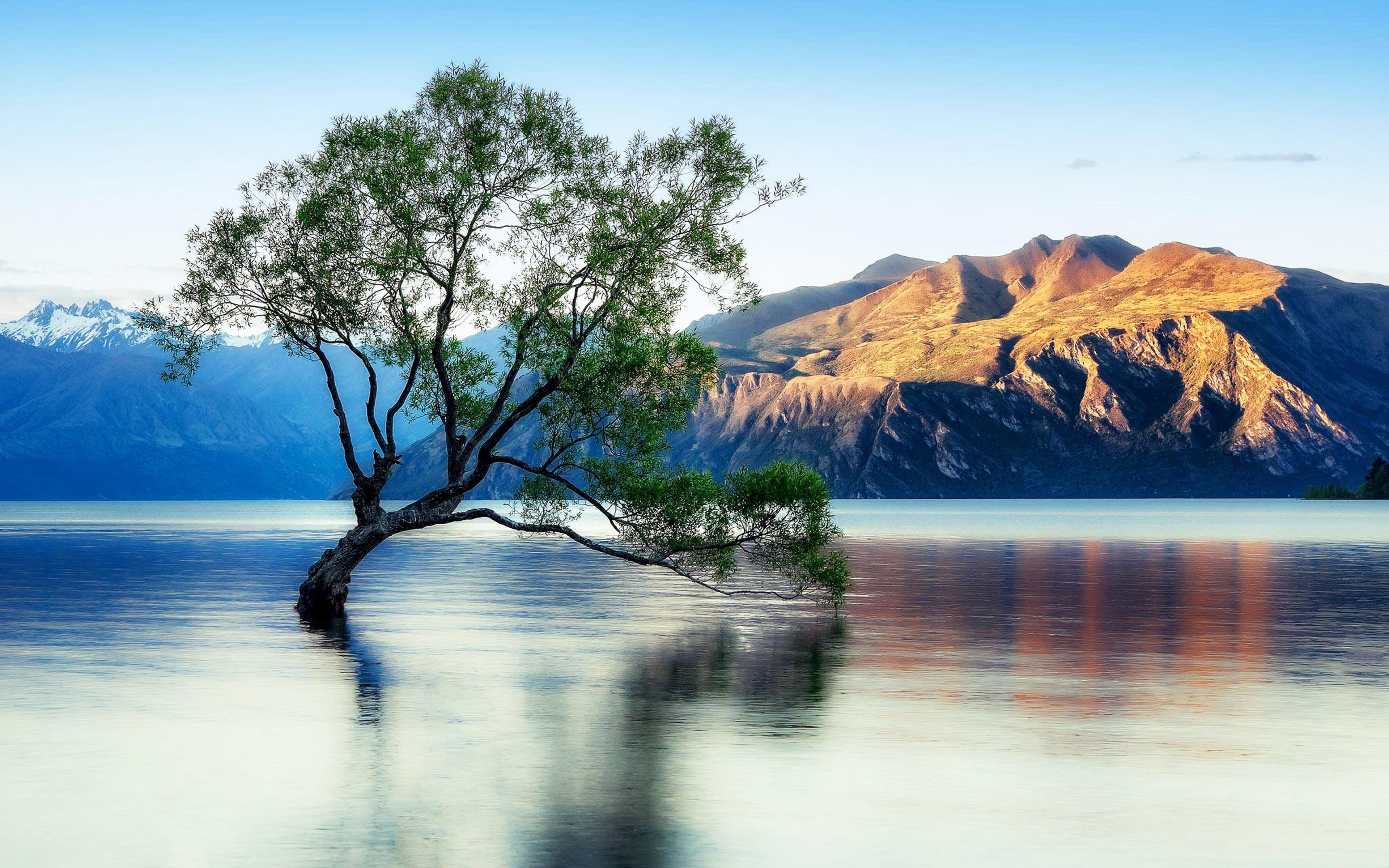 Lake Wanaka Beautiful Reflection New Zealand Wallpaper - New Zealand High Res , HD Wallpaper & Backgrounds