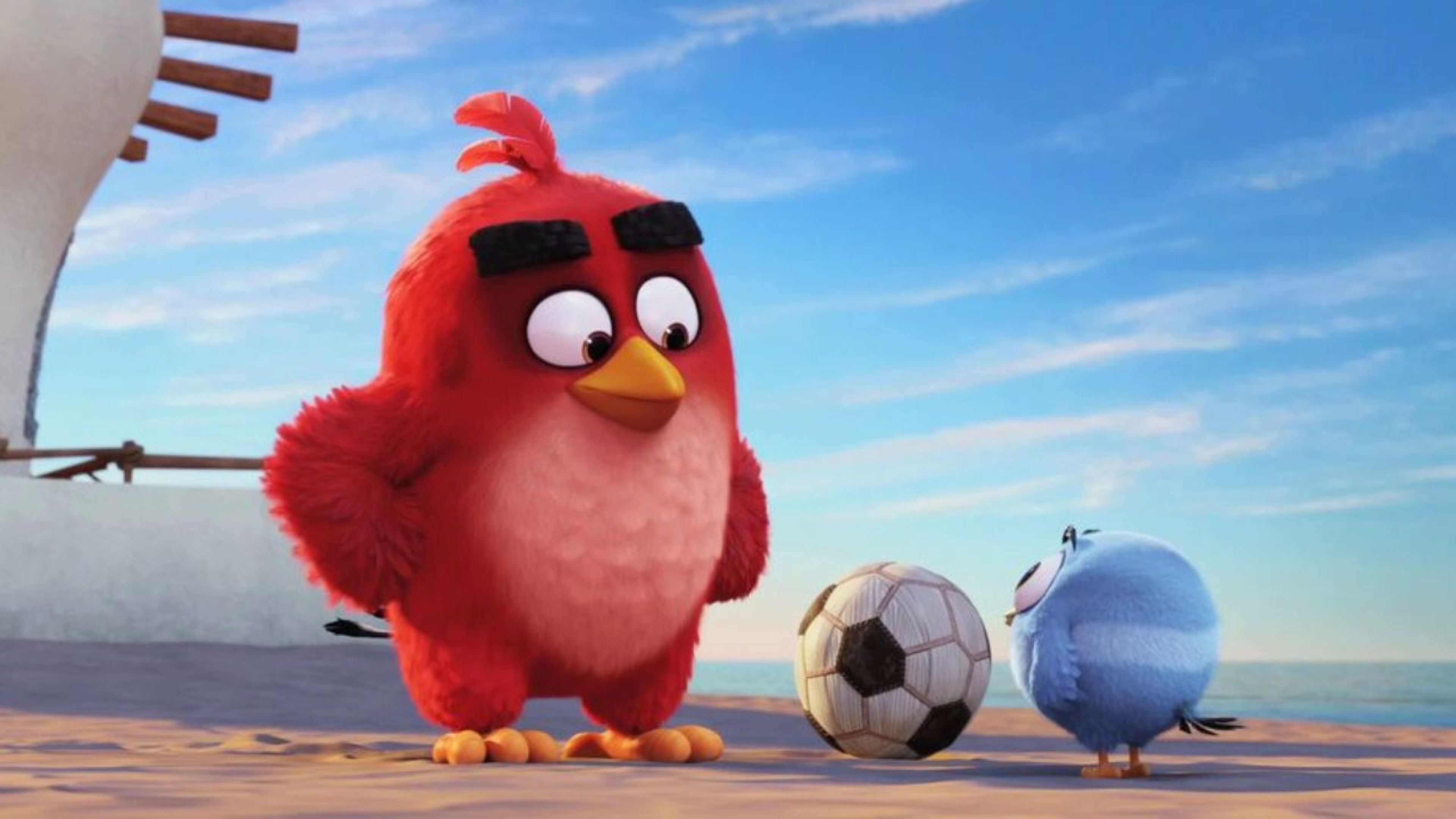The Angry Birds Movie Full Hd Wallpapers - Angry Birds Movie Hd , HD Wallpaper & Backgrounds