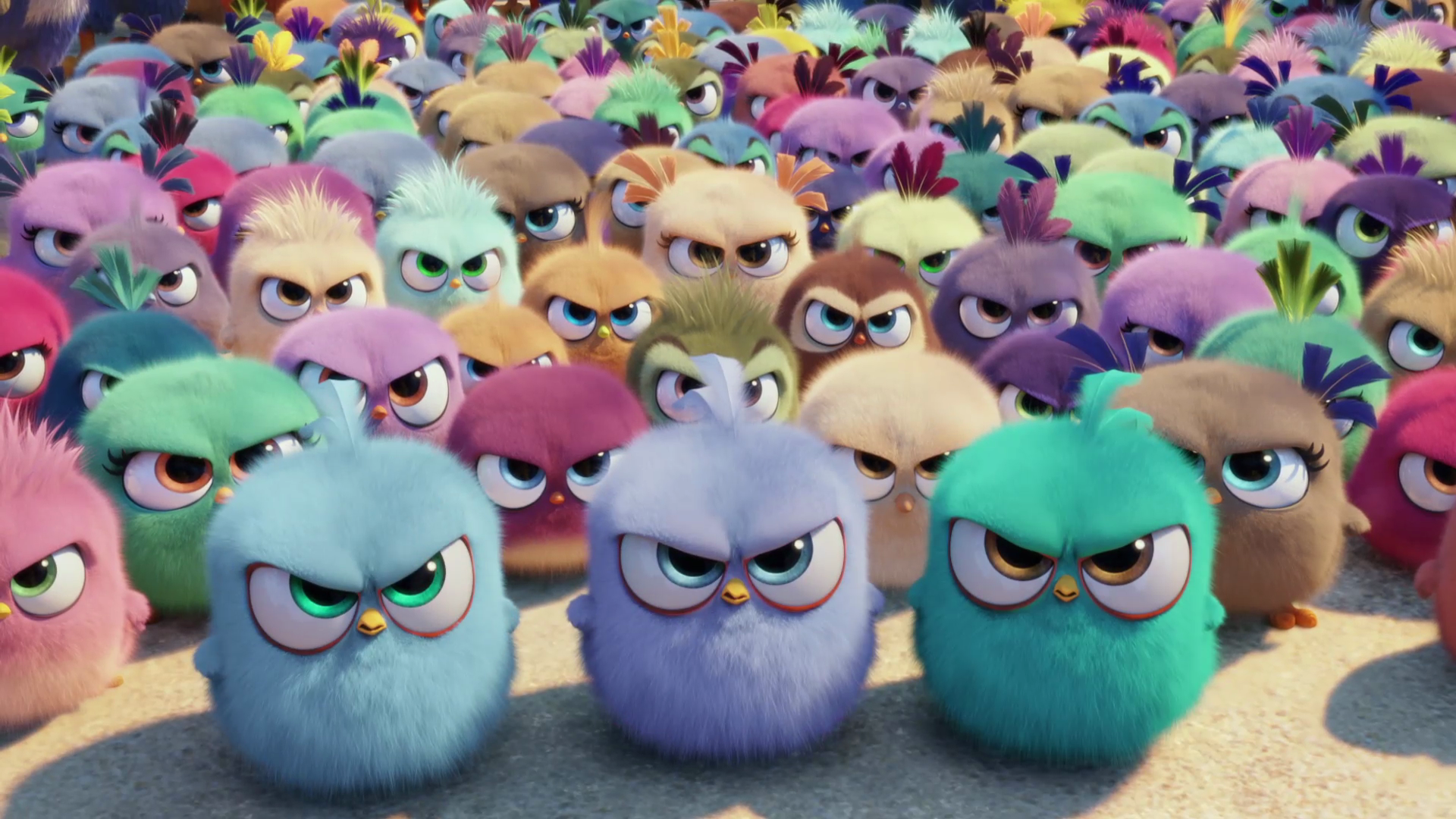 The Angry Birds Movie Hd Gallery And First Trailer - Angry Birds Movies , HD Wallpaper & Backgrounds