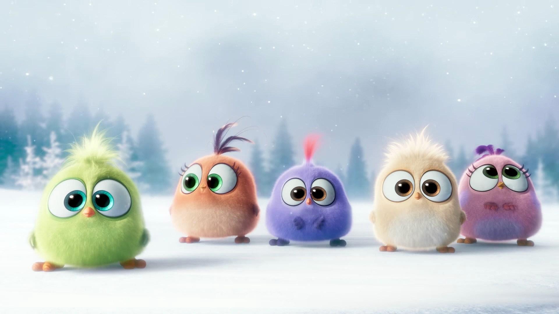 Cgi Angry Birds Angry Birds 1080p Hd Wallpaper Background - Cute Angry Birds Baby , HD Wallpaper & Backgrounds