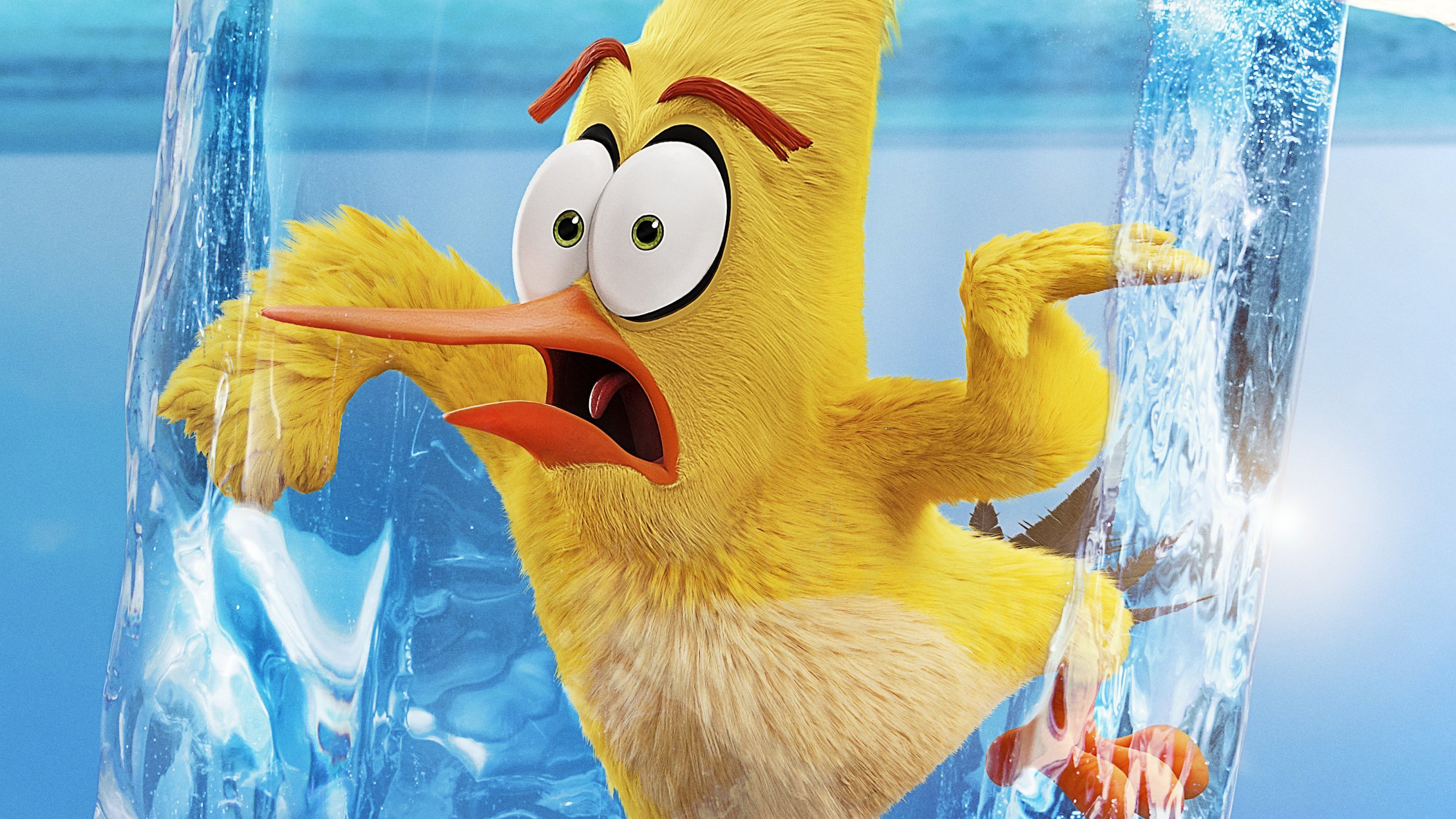 Wallpaper The Angry Birds Movie - Angry Birds The Movie 2 , HD Wallpaper & Backgrounds