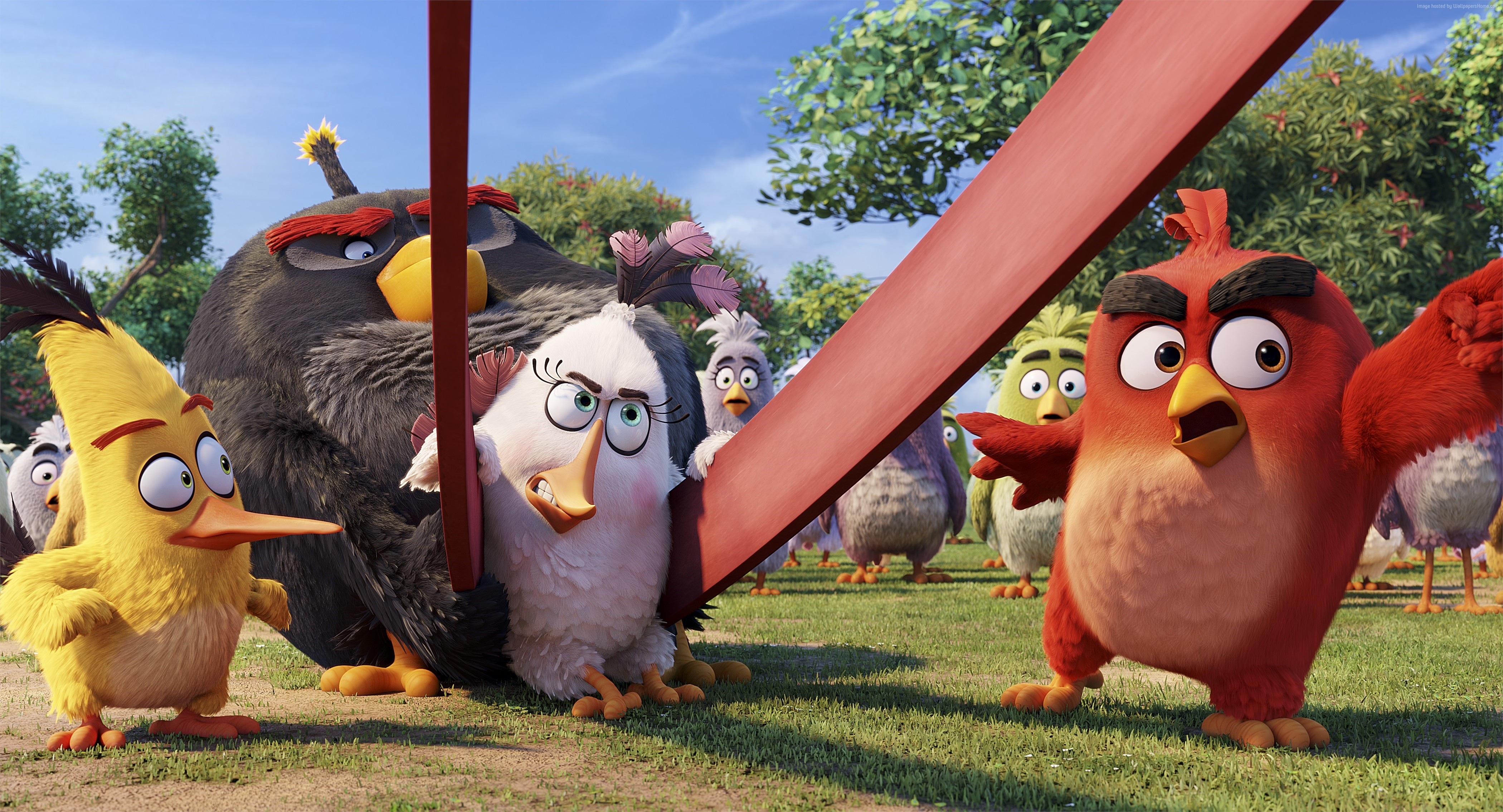 #red, #chuck, #bomb, #best Animation Movies Of 2016, - Film Angry Birds Movie , HD Wallpaper & Backgrounds
