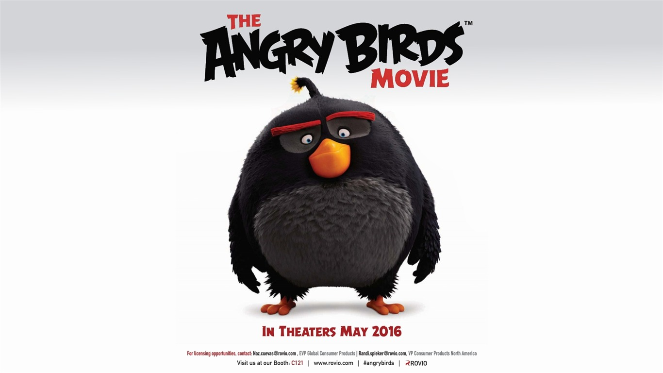 Moive / The Angry Birds Movie 2016 Hd Wallpaper - Angry Birds Movie 2015 , HD Wallpaper & Backgrounds