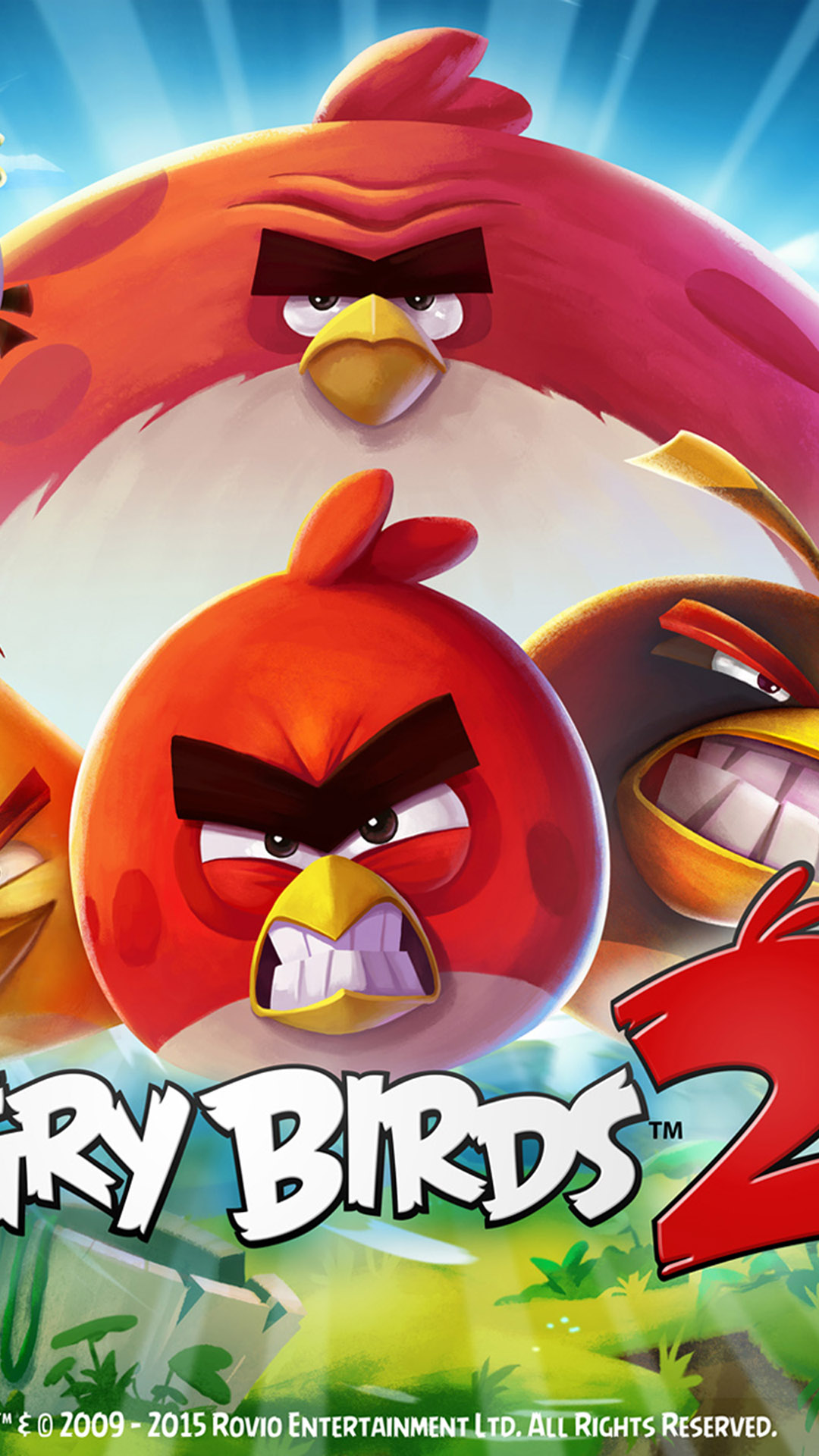 Mobile 1080×1920 - Angry Birds , HD Wallpaper & Backgrounds