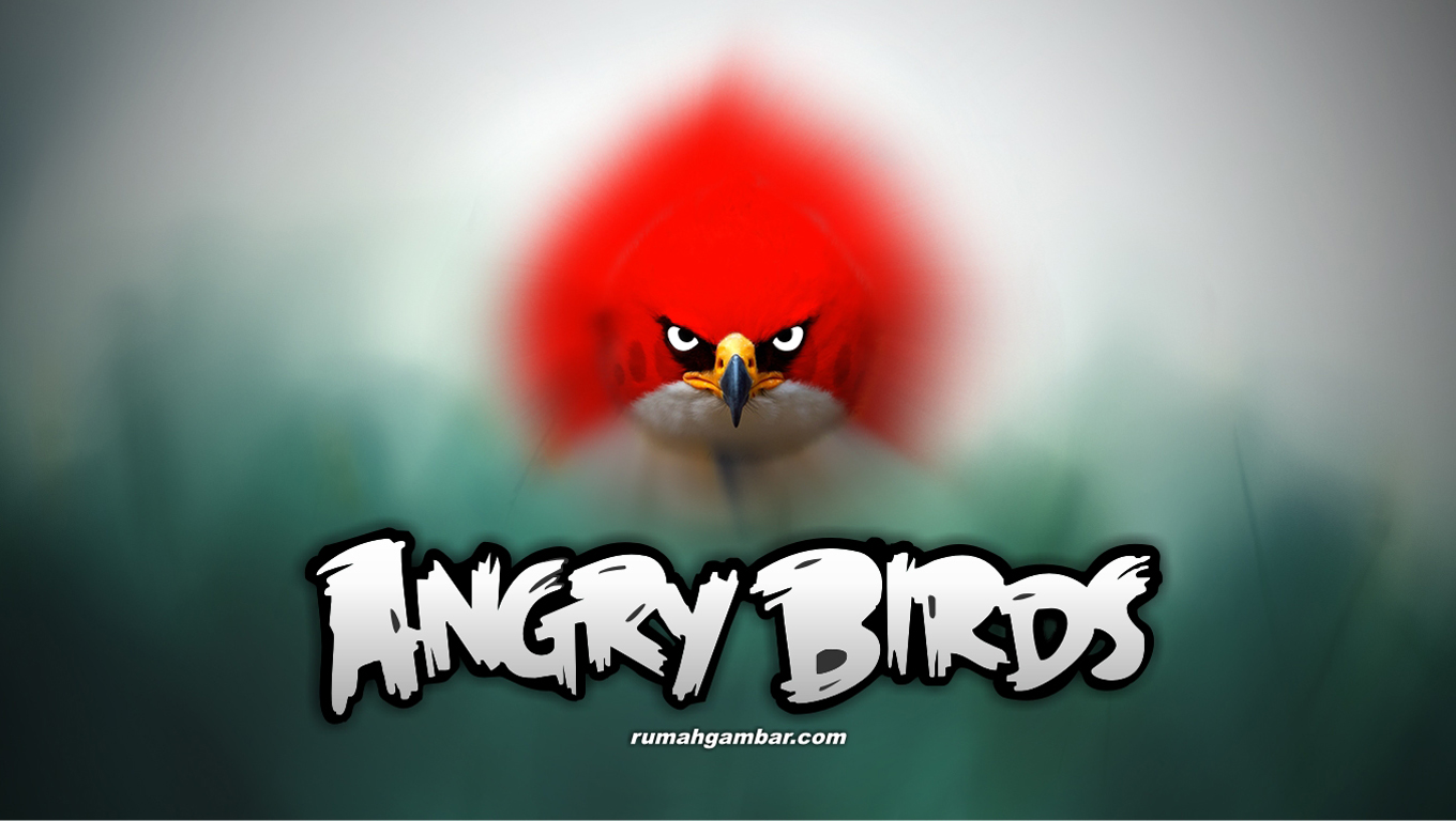 The Angry Birds Movie Wallpapers High Resolution And Angry